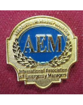 Pin - AEM Logo
