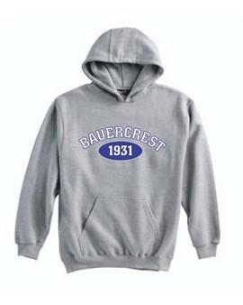 Hooded Sweatshirt: Adult