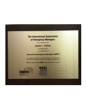 IAEM - AEM Plaque -Express Delivery